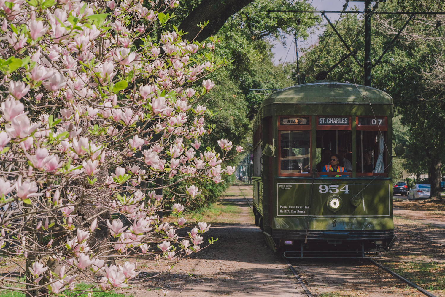 Image Result For Garden District New Orleans Where To Go