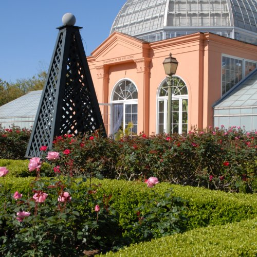 City Park Botanical Garden (photo courtesy of New Orleans City Park)