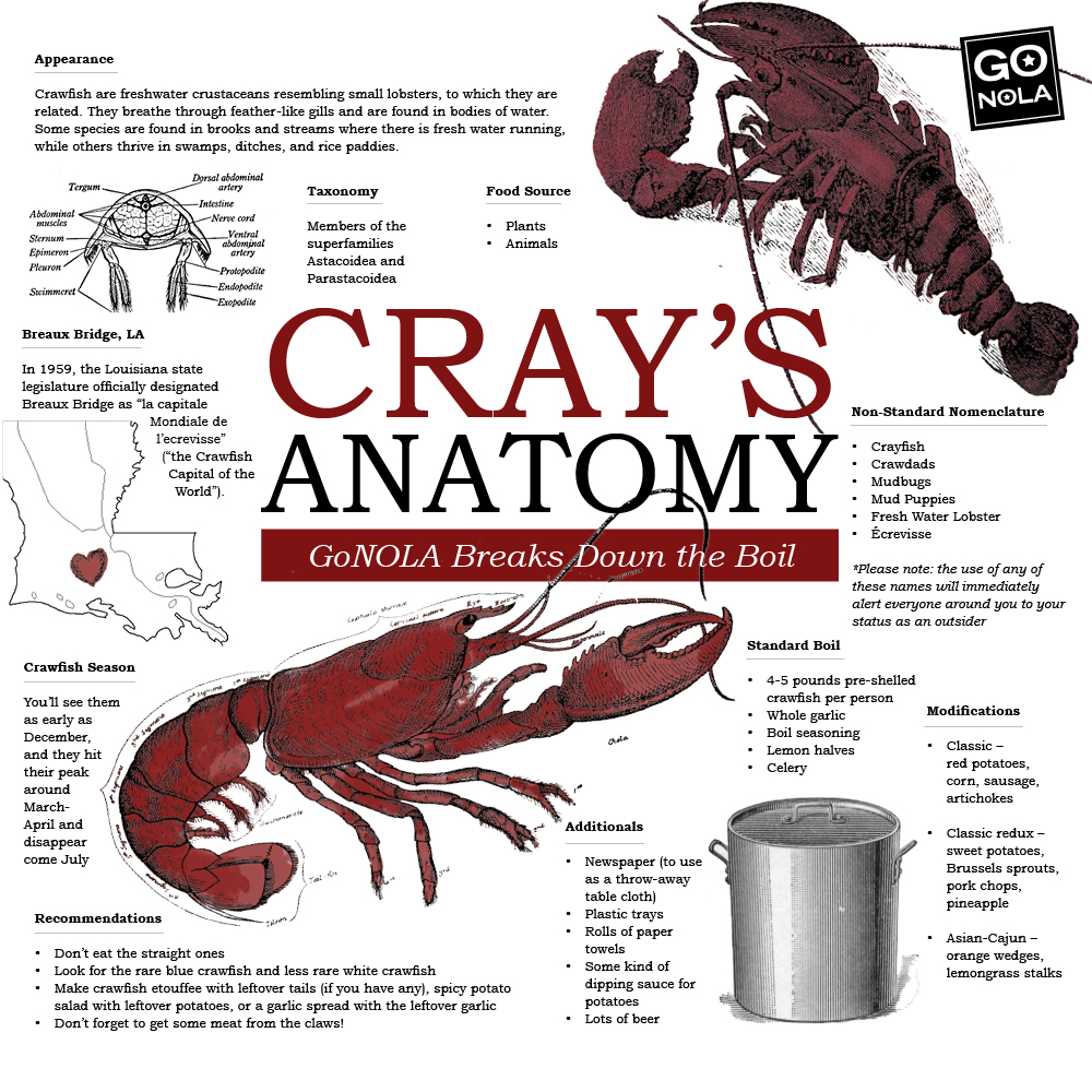 Cray\'s Anatomy: GoNOLA Breaks Down the Crawfish Boil