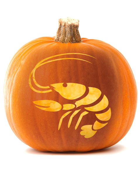 GoNola_Pumpkin_CreepyCrawfish2