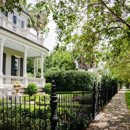 Strolling through Uptown, New Orleans.