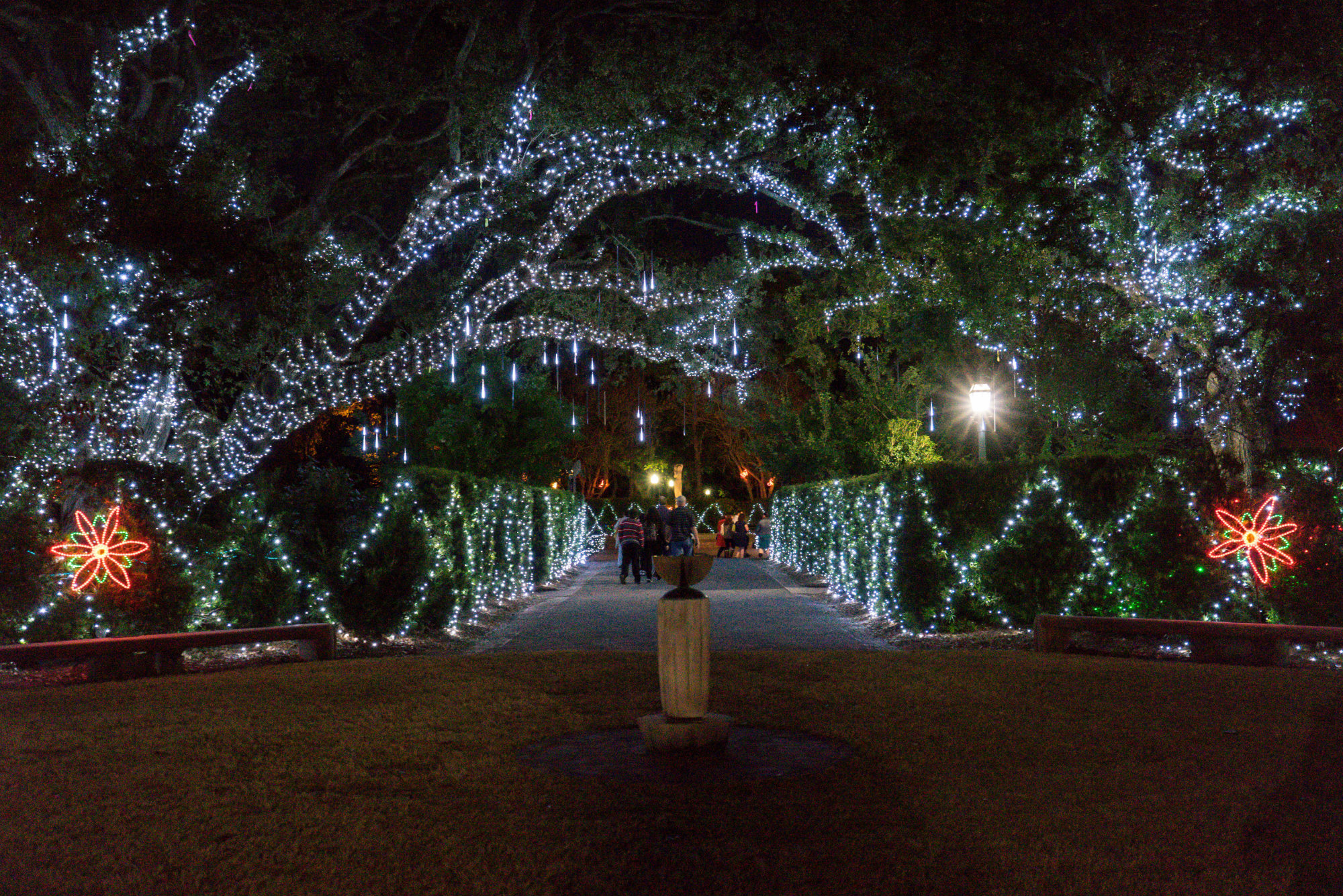 Christmas In New Orleans.10 New Orleans Holiday Festivities You Can T Miss