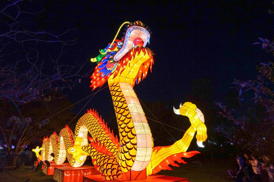 Perhaps the most impressive display in the Botanical Garden is the Chinese Dragon.