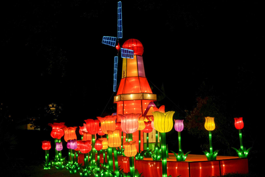 A colorful Dutch-inspired scene of tulips and an animated windmill.