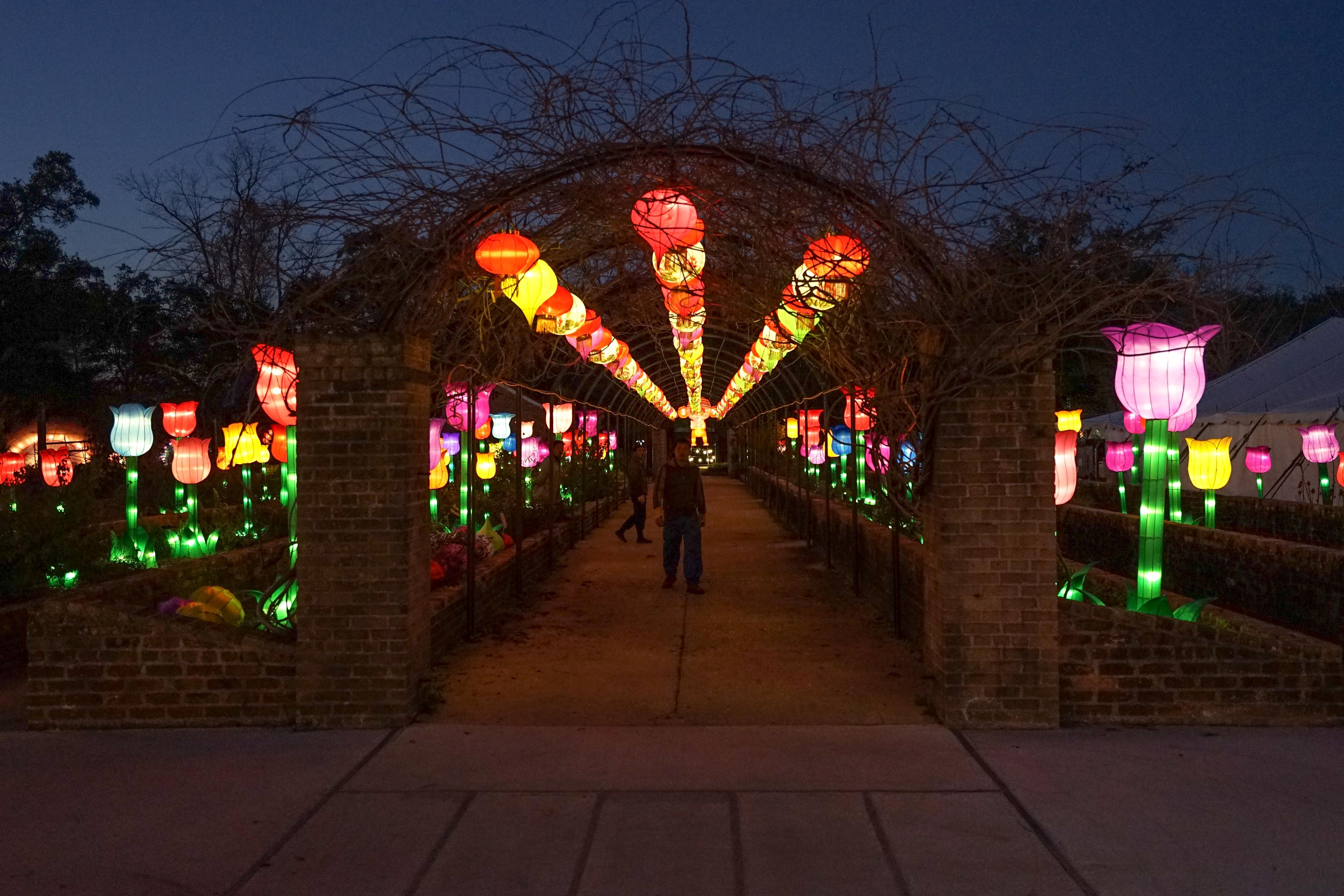 Garden of Wonder: China Lights at City Park