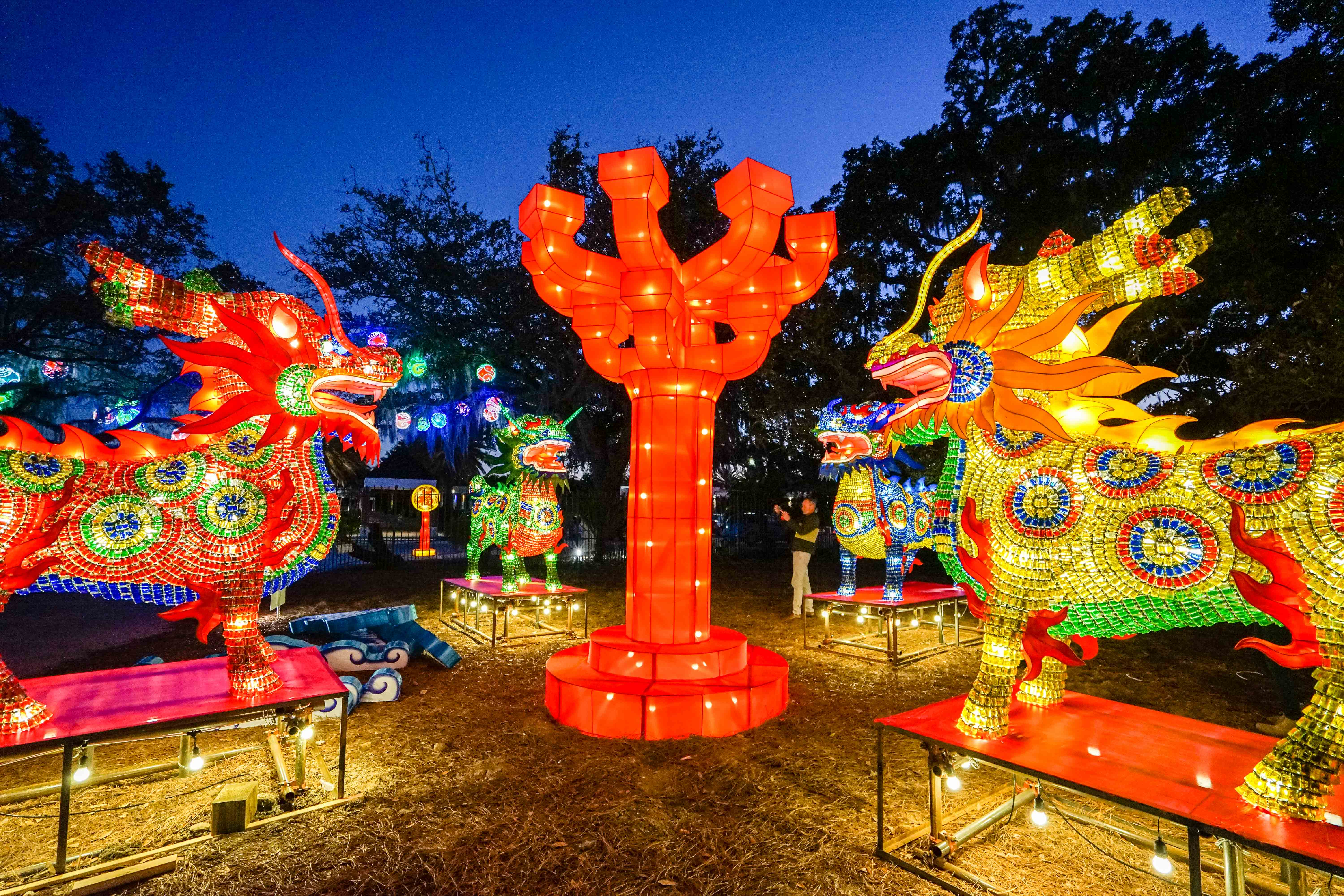 China Lights at City Park Botanical Garden : lighting city in china - azcodes.com