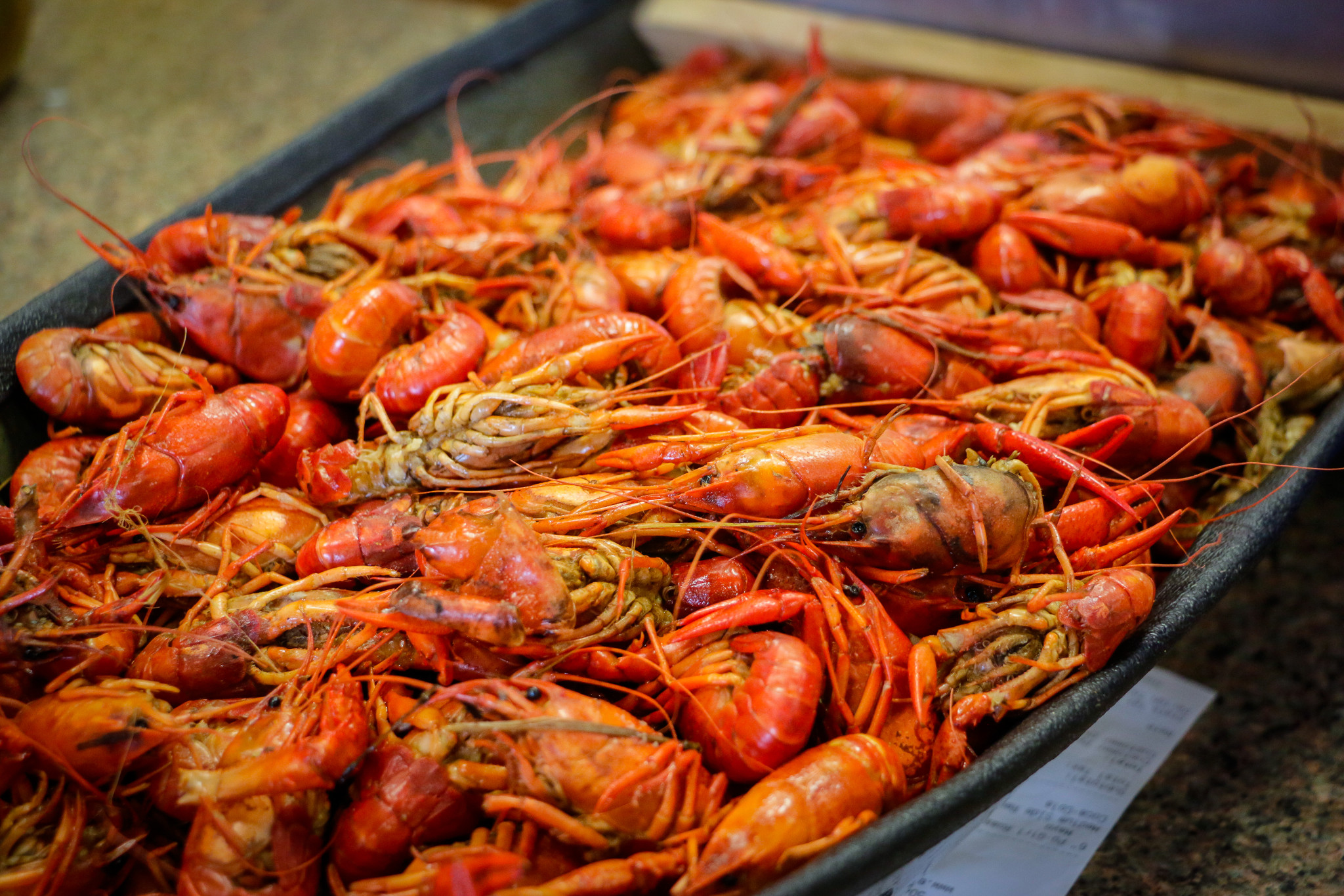 Beautiful, bright crawfish. (Photo: Rebecca Ratliff)