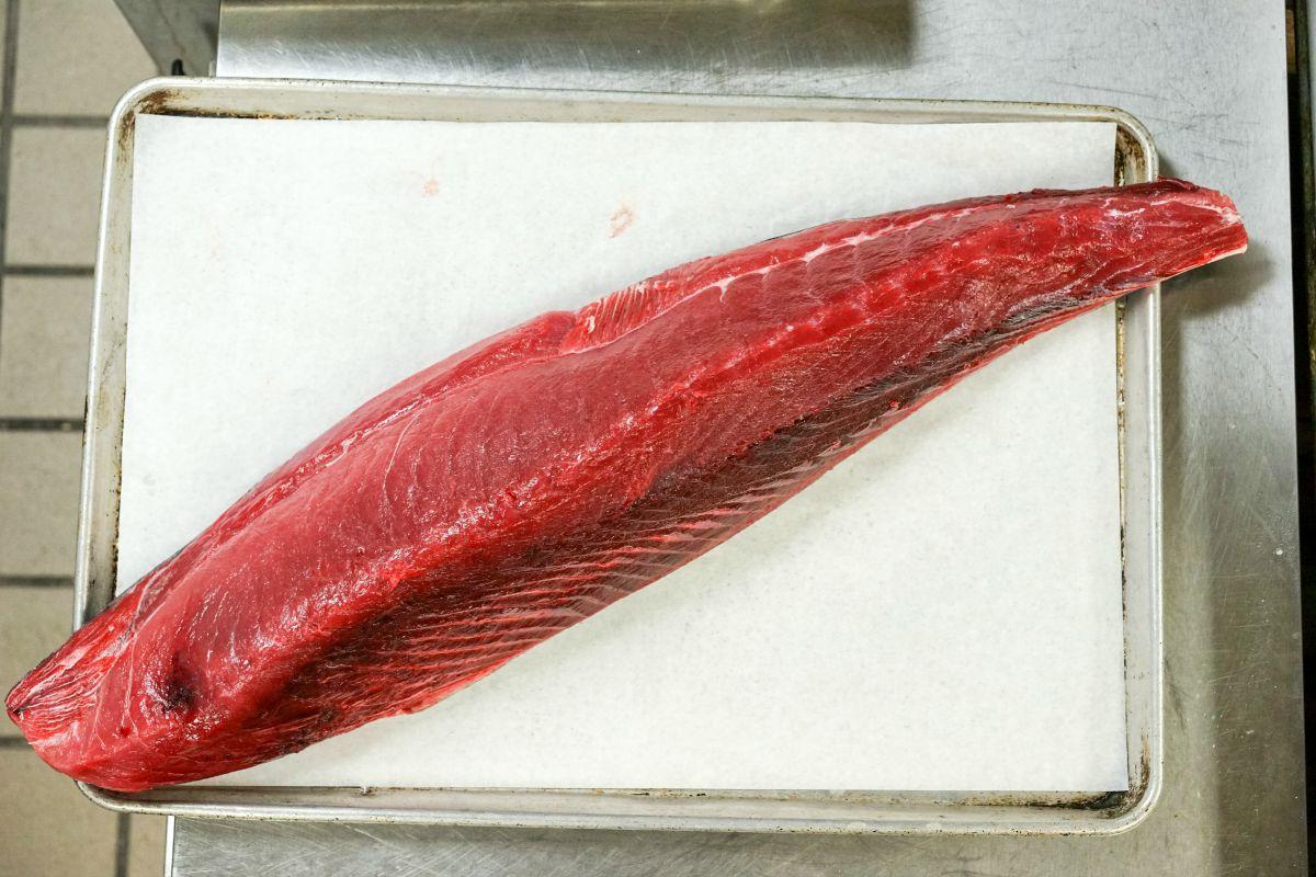 gulf caught tuna