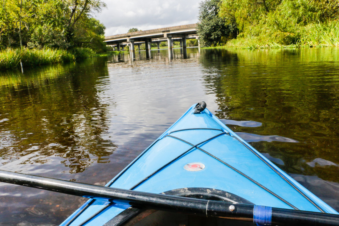 A nondescript launch point takes you deep into Shell Bank Bayou and its cypress forest.