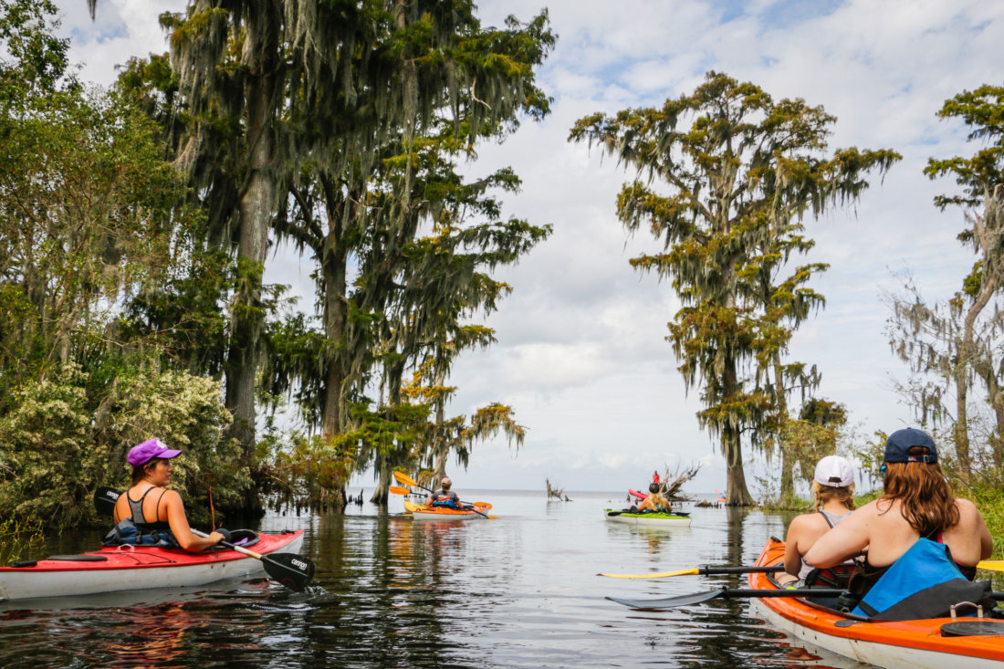 The stark but stunning vista as you approach Lake Maurepas from Shell Bank Bayou.