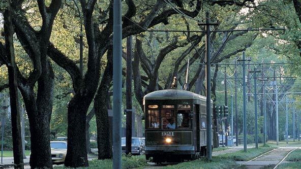 Image Result For Garden District Bike Tour New Orleans