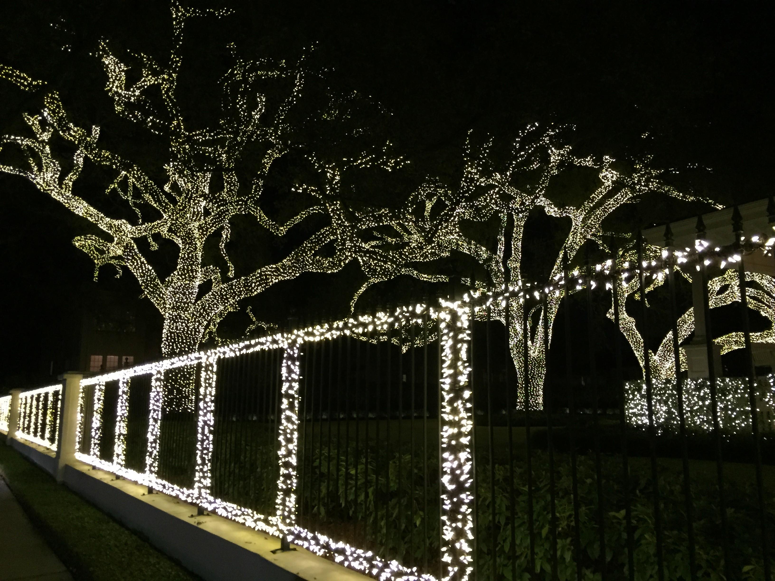 lights on st charles avenue